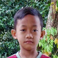 Sponsor Alex (Indonesia)
