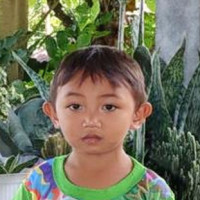 Sponsor Junifer (Indonesia)