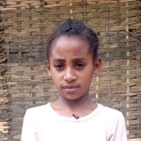 Sponsor Chaltu (Etiopia)