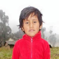 Adozione a distanza: Wilson (Equador)