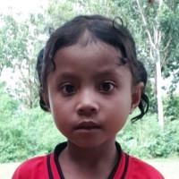 Jeni (Indonesia)