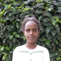 Adozione a distanza: sostieni Tarikua (Etiopia)
