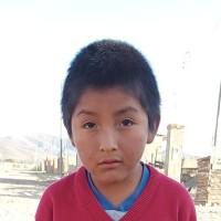 Adozione a distanza: sostieni Jhonny (Bolivia)
