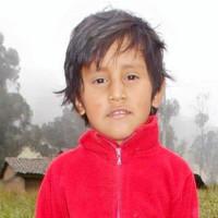 Adozione a distanza: sostieni Wilson (Equador)
