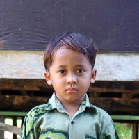 Apadrina Boy (Indonesia)